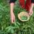 Raste svest o potrebi promene načina ishrane i lečenja biljem