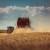 Oboren svjetski rekord u prinosu pšenice s nevjerojatnih 17,398 t/ha
