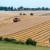 Prosječna cijena kupljenih oranica lani iznosila 24.347 kn/ha