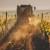 EU strategija smanjenja uporabe pesticida najviše će pogoditi vinogradarstvo?