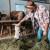 I slavni i poznati ulažu u poljoprivredu: Pomodarstvo ili biznis?