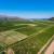 Akcijski plan suzbijanja sredozemne voćne muhe i dalje je na snazi