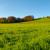 Devet ciljeva ZPP-a: Od održivog dohotka do zaštite zdravlja