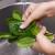 Preko 60 osoba hospitalizirano nakon što su jeli špinat - što su zapravo pojeli?
