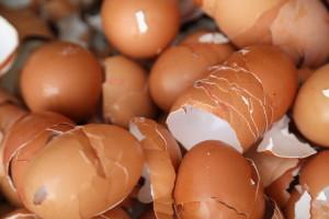 Pripremite čaj od ljuski jaja koji odlično deluje na biljke
