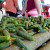 Za 11 posto pao izvoz poljoprivredno-prehrambenih proizvoda iz EU