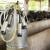 Rešetar: Ministarstvo nam ne mora tražiti novog otkupljivača mlijeka, nego nas ojačati