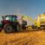 Žetva pšenice: Očekivani prinos - pet tona po hektaru?