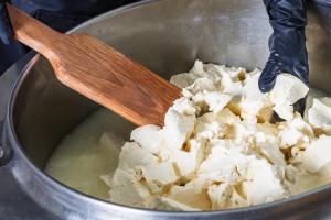 Mliječni proizvodi na gospodarstvu - do sira i pomoću bilja!