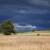 Koliko je kiša dobra za usjeve i kako unijeti atmosferski azot u tlo?