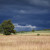 Koliko je kiša dobra za usev i kako se atmosferski azot unosi u zemljište?