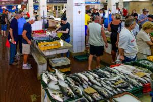 Evropa ostaje bez ribe?