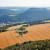 Nemačka: Skok cena poljoprivrednog zemljišta - šta je razlog?