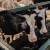 Rešetar: Strategija poljoprivrede mora definirati kako proizvesti 600 milijuna kg mlijeka