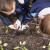 U osječkoj školi učenici zbrinjavaju otpad i obrađuju školski biovrt