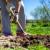 Mesec mart donosi radove u vrtu i voćnjaku