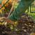 Radovi u listopadu: Jesen je vrijeme berbe, obrade tla, sjetve i kompostiranja