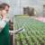Vrtni centri, rasadnici te trgovine rezervnih dijelova za strojeve počinju s radom
