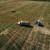 """Rast cena nafte """"zaustavila"""" korona, ali povećala potražnju za žitaricama"""