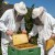 Bespovratna sredstva za pčelare