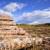 Klöckner: Šume najviše uništava pretvorba u poljoprivredno zemljište