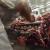 Argentina obustavlja sav izvoz govedine - mesna industrija negoduje
