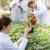 FAZOS: Prijavite se na program cjeloživotnog učenja iz Zaštite bilja!