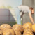 EK zabranjuje klorprofam - sredstvo koje sprječava klijanje krompira