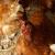 Uzgoj kokošaka: Kad je najbolje vreme za nosivost?