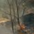 U Hercegovini gore šume - vatra se približila okolnim kućama