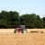 Ljetni radovi u polju: Završetkom žetve počinje nova sezona proizvodnje