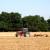 Ljetni radovi u polju, završetkom žetve počinje nova sezona proizvodnje