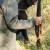 Lovci s područja SMŽ oslobođeni plaćanja 50% iznosa godišnje naknade