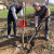 Cijepljenjem sadnica oraha do bržeg plodonošenja - s rezidbom oprezno