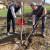 Kalemljenjem sadnica oraha do bržeg plodonošenja - sa rezidbom oprezno