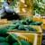 Avokado isušuje tlo i izguruje domaće vrste - uzgajivači ga se ne odriču zbog dobre zarade