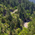 Šumama pokriveno 43% EU - u BiH šumovitost 1,38 ha po stanovniku