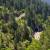 EUROSTAT: 43% EU pokriveno šumama, Srbija srednje šumovita
