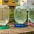 Pčelama je potrebna i voda: Obezbedite im pojilice blizu košnice