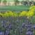 Obilježavamo Svjetski dan zaštite okoliša: Bioraznolikost ključan faktor