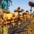 Lopovi ne miruju: Požnjeli i odvezli suncokret, obrali lješnjake, ukrali 30 stabala šljive