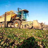 Lider su u ekološkoj proizvodnji, ali o okolišu brinu i austrijski konvencionalni proizvođači