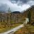 Sve češći požari u šumama - Što možemo učiniti za prirodu?