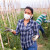 Žene na selu poseban teret ponele su tokom pandemije, a šta su dobile?
