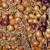 Pravilnim čuvanjem spriječite prorastanje kod crnog luka