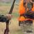 U samo dva dana ubili više od 500 divljih svinja i jelena