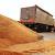 Nestašica kukuruza u Kini poljuljala tržište - očekuju se više cene u celom svetu?