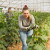 Agroekologija je novi put u poljoprivredi - još uvijek trnovit u Poljskoj