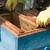 Pčelaritraže jednostavniji zakonski proces dokazivanja trovanja pčela