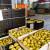 Sunčano i toplo vreme - zaštititi jabuke od skladišnih bolesti